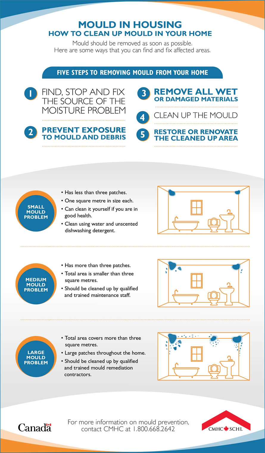 how-to-clean-up-mould-in-your-home-infog